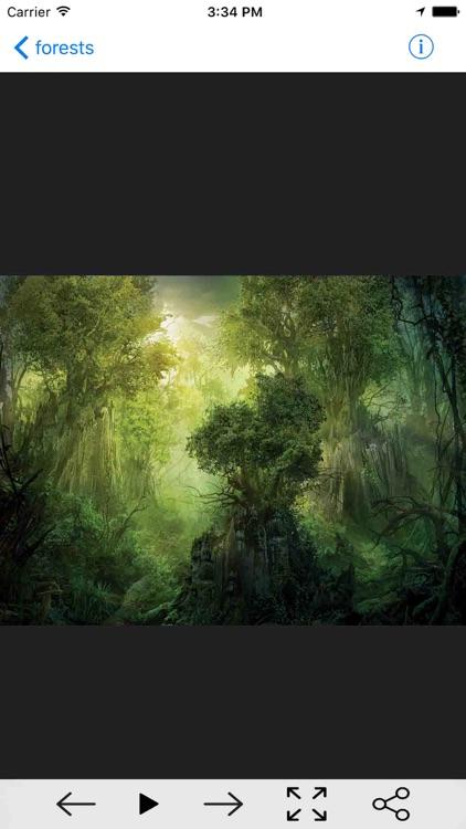 iWallpapers HD Pro screenshot-3