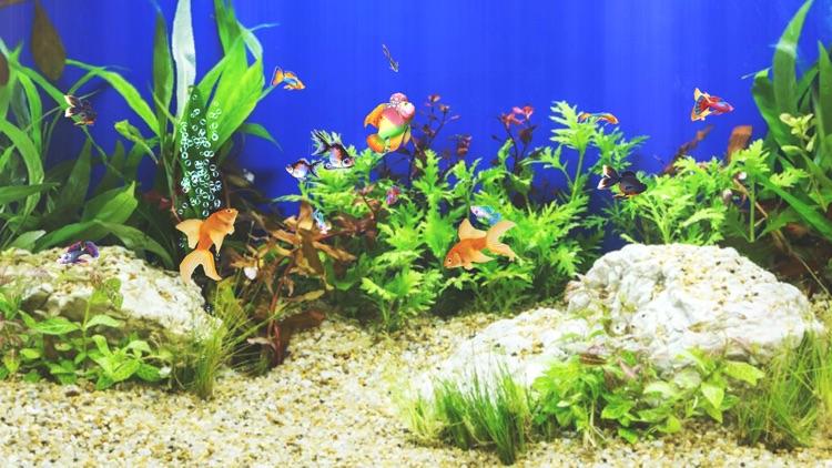 Aquarium Sim screenshot-3
