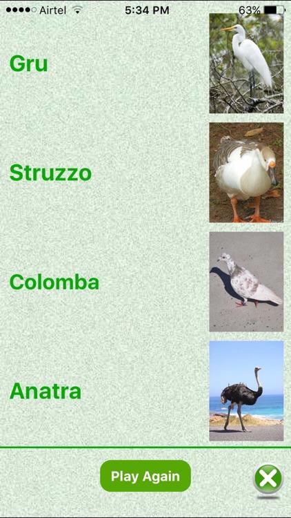 Flashcards Italian Lesson screenshot-4