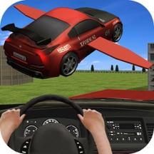 Flying Racing In Car