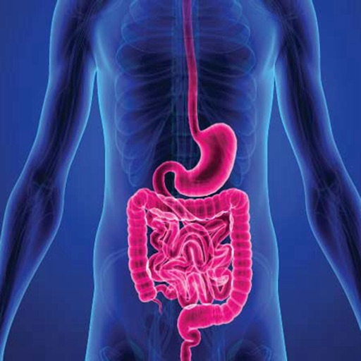 Leaky Gut 101-Symptoms and Digestive System