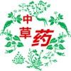 广西中草药平台