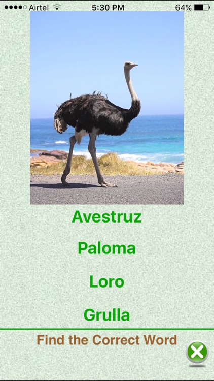 Flashcards Spanish Lesson screenshot-3