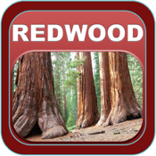 Redwood National Park app review