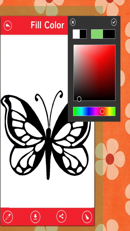 Butterfly Color Book-Beautiful Butterfly Canvas