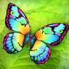 Paint Me a Butterfly!