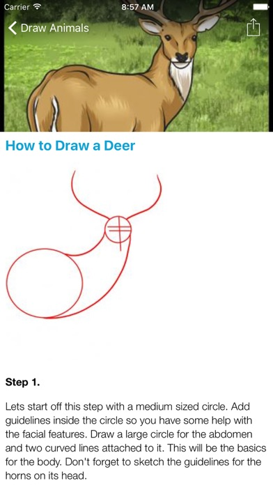 How To Draw Animals - 100% FREE screenshot three