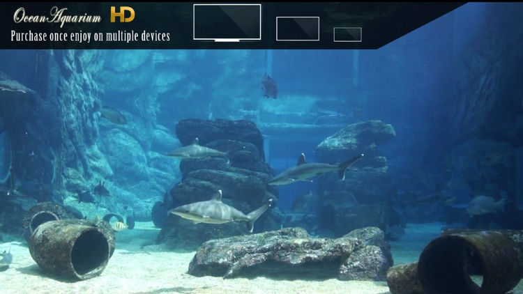 Ocean Aquarium HD screenshot-1