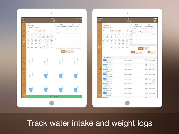 Daily Carb for iPad - Glucose Control and Tracker