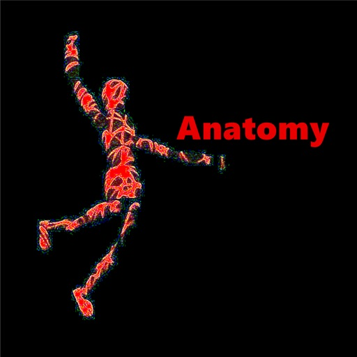 Anatomy Glossary- Cheatsheet with Study Guide