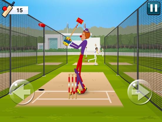 Stick Cricket 2-ipad-3