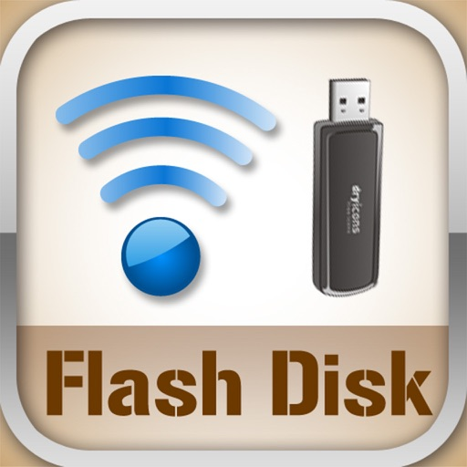 Flash Disk icon