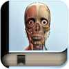 Explain 3D: Human body