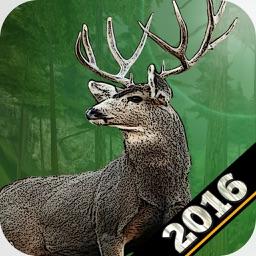 Big Game Wild Deer Hunting 3D Hunter 2016