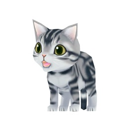 Kitty Cat 3D Animated Stickers: American Shorthair
