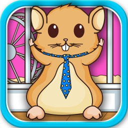 Hamster Dress Up Virtual Fashion Makeover Zoo Pets