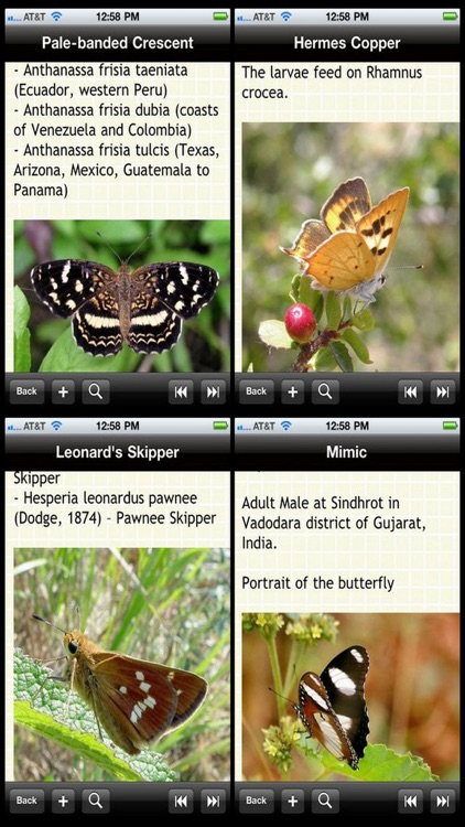 US Butterfly Bible screenshot-0