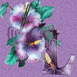 3DFlower With Butterfly Stickers Pack For iMessage