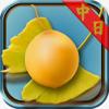 銀杏的果實:看小說學日文《中日對照》