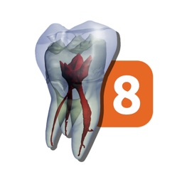 Tooth Atlas 8