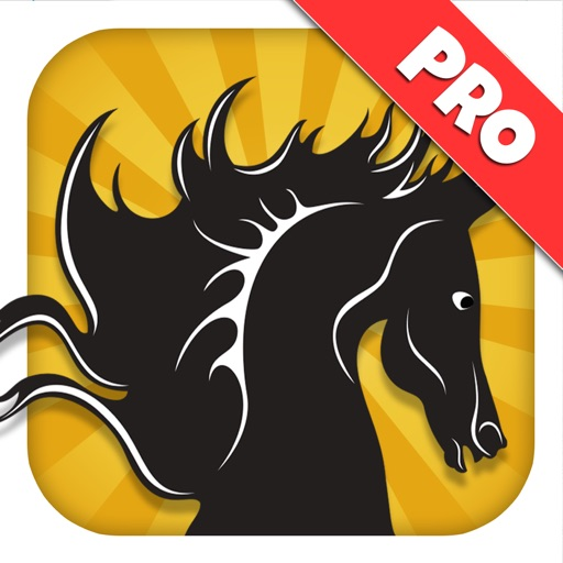 A Black Stallion: 3D Horsey Running Game - Pro Edition