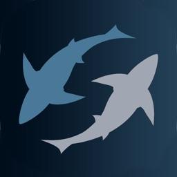 SHARK! SHARK!! SHARK!!!