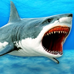 Monster Hunter Shark: Killer Fish HD