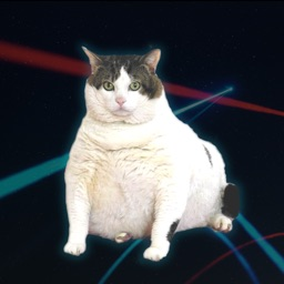 CatPaint