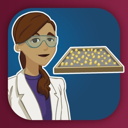 Virtual Labs: Controlling Water Activity in Food