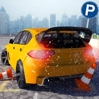 Codes for Multi-Level Snow Car Parking Mania 3D Simulator Hack