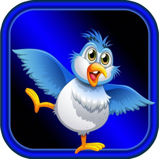 3D Birds Football Match - Rise Of Eggs To Shuffle