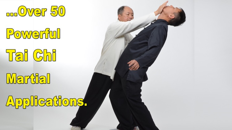 Tai Chi Martial Applications