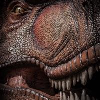 Codes for 3D Dinosaur City Stampede Smash Free Jurassic Game Hack