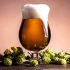 HomeBrew Beer Magazine - Brew Your Own Beer @ Home