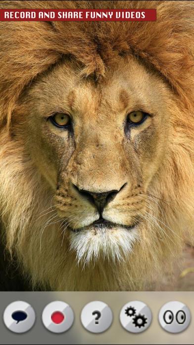トーキング・ライオンのおすすめ画像2
