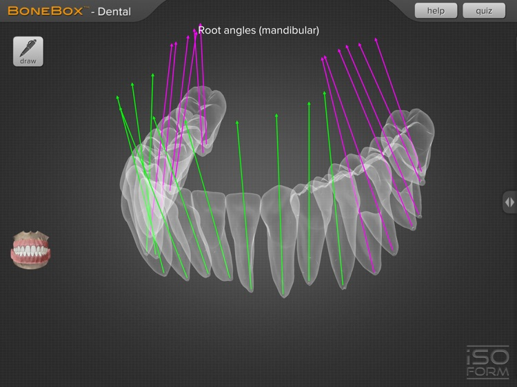 BoneBox™ - Dental Pro screenshot-3