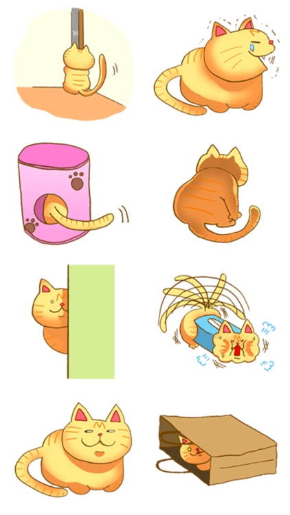 Mur Cat Everyday! screenshot-3
