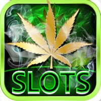 Codes for Dream of Weed Slot Machines – Free Slots & Casino Hack