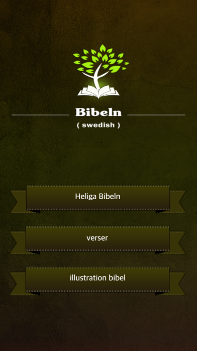 Holy Bible in Swedish Audio screenshot one