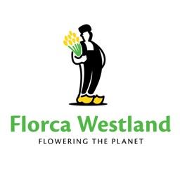 Florca Webshop