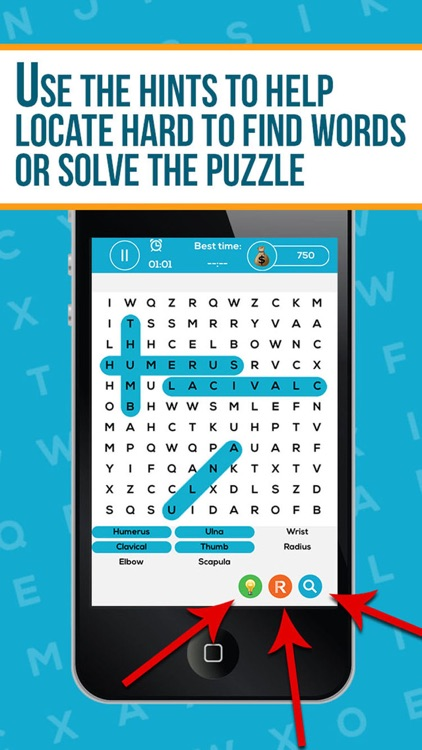 Anatomy Word Search Pro