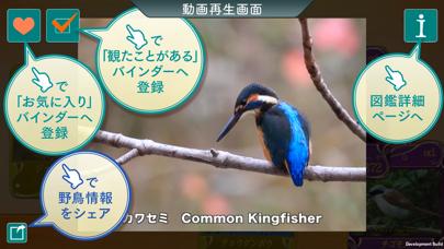 GPS動く野鳥図鑑miniのおすすめ画像4