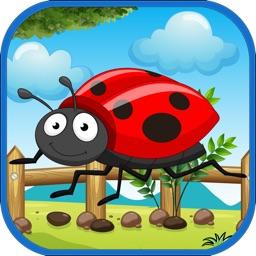 The Bug Animals Color Quiz