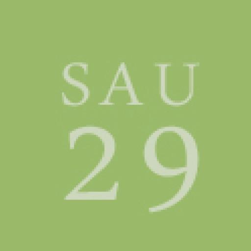 School Administrative Unit 29