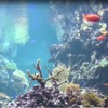 Reef Aquarium 2D/3D free - iPhoneアプリ