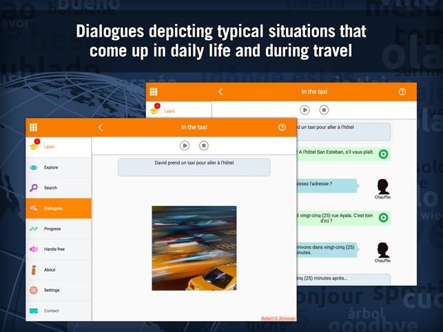Learn French - MosaLingua Screenshot