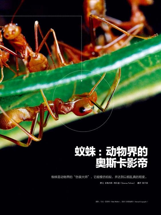 环球科学HD screenshot-4