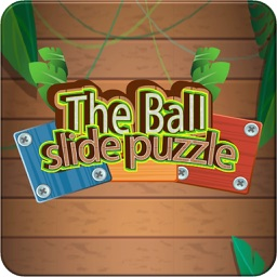 The Ball slide puzzle