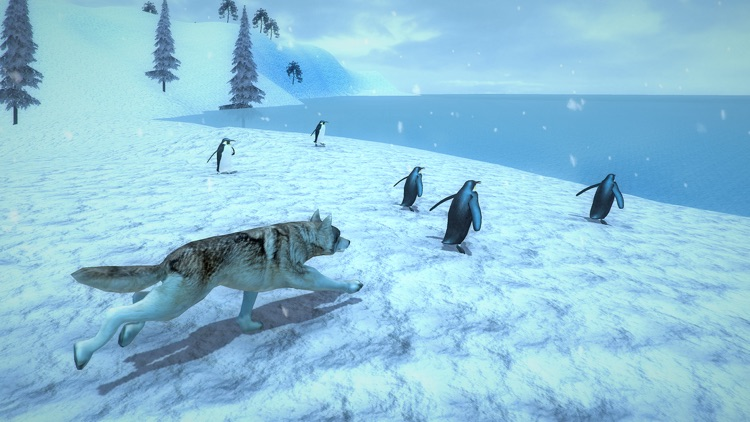 Life of Snow Wolf screenshot-4