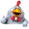 Furkan Sonmez - Ask The Chicken artwork